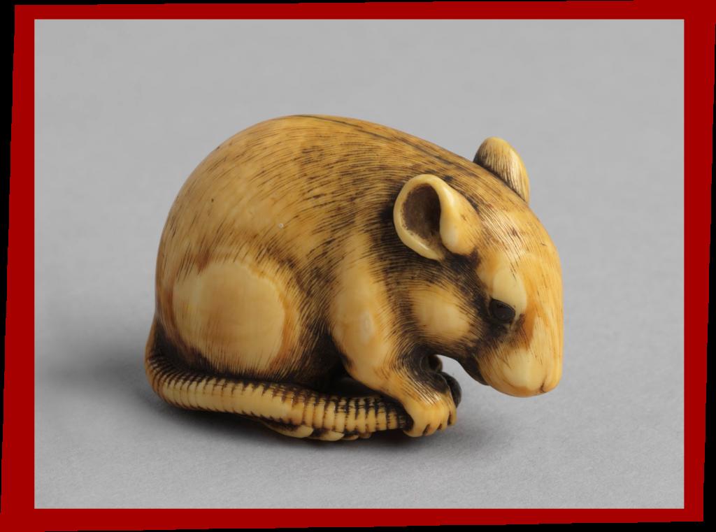 Rat: Ivory